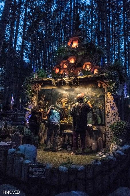 Electric Forest- Hayden Coens